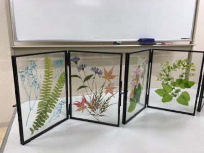 野の花を主役に押し花づくり ~道新文化センター